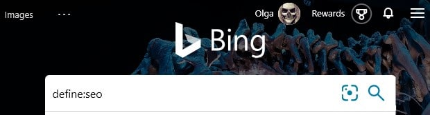 The Bing advanced search operator define: typed into the search box in Bing.