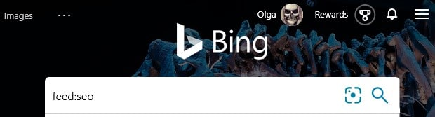 The advanced Bing search keyword feed: typed into the search box in Bing.