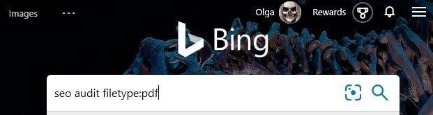 The Bing search operator filetype: with an example search term typed into the search box in Bing.