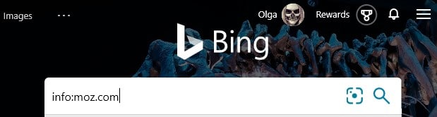 The Bing advanced search keyword info: typed into the search box in Bing.