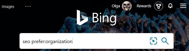 """The advanced Bing search operator prefer:organization combined with the search keyword """"seo"""" typed into the search box in Bing."""