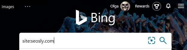 The advanced search operator site: typed into the search box in Bing.