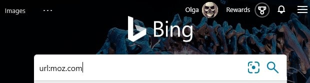 The Bing advanced search keyword url: typed into the search box in Bing