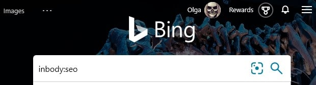 """The Bing search parameter inbody: with an example search term """"seo"""" typed into the search box in Bing."""