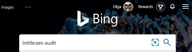 """The Bing search parameter intitle: with an example search term """"seo"""" typed into the search box in Bing."""