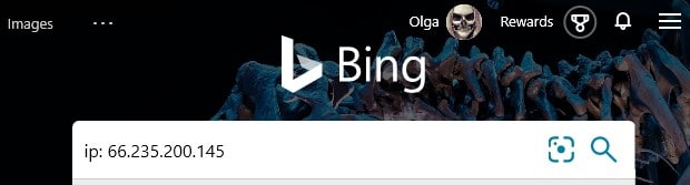 The Bing advanced search operator ip: typed into the search box in Bing.