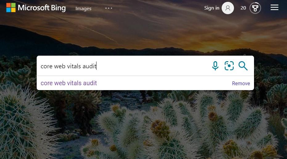 Alternative search engines: Bing