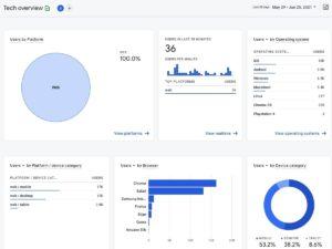 Google Analytics Basic SEO Guide