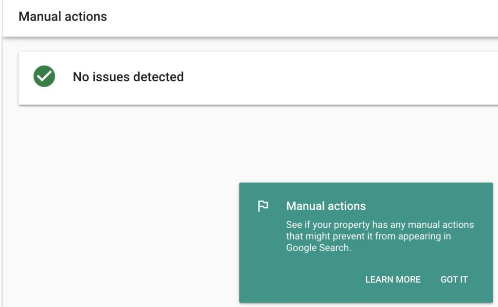 Google Search Console Manual Actions report