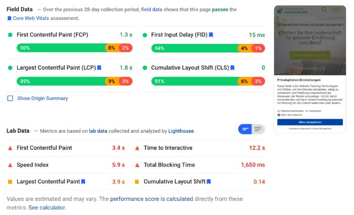 Field and lab data in Google PageSpeed Insights