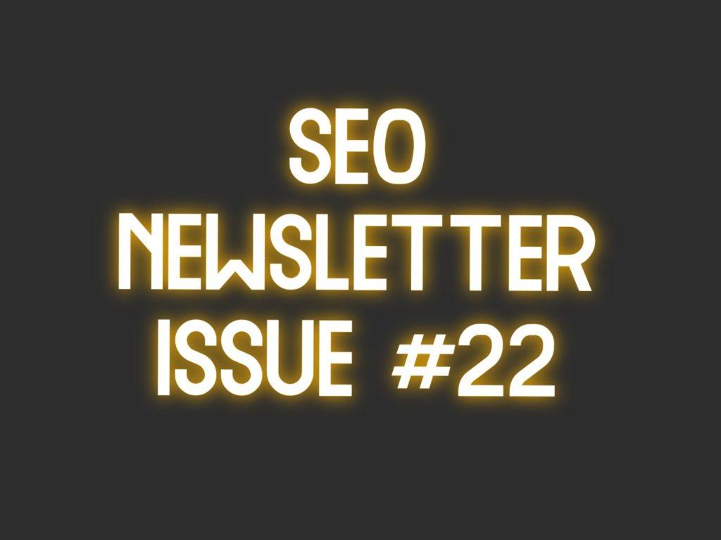 seo newsletter 22